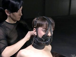 BDSM, Bondage, Cute, Femdom, Fetish, Skinny, Stockings, Tanned, Torture, Whore,