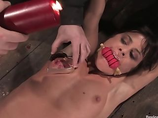 BDSM, Cecilia Vega, French,