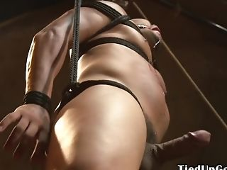 BDSM, Bound, HD, Muscular, Submissive,