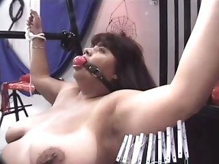 BDSM, Brunette, Dirty, Ginger, Horny, Kinky, Mature, Nerd, Nikki Santana, Slut,
