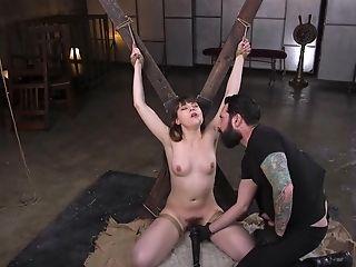 Babe, BDSM, Bondage, Boobless, Cumshot, Doggystyle, Domination, Hairy, HD, Helpless,