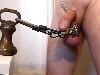 BDSM, Punishment, Small Cock,